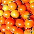 Cherry Tomatoes by Carol Groenen