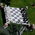 Chess At Large II by Andrea Simon