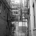 Chicago 1 by Samantha L