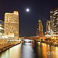 Chicago At Night At Columbus Drive Bridge by Paul Velgos