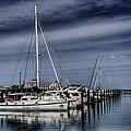Chicago Harbor by Scott Wood