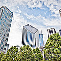 Chicago Skyline At Millenium Park by Paul Velgos