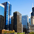 Chicago Skyline Downtown City Buildings by Paul Velgos