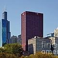 Chicago Skyline From Millenium Park by Christine Till