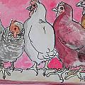 Chickens by Jenn Cunningham