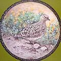Chilean Tinamou by Ronald Osborne