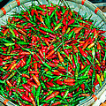 Chili Peppers by Robert Daniells