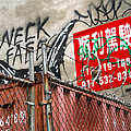 Chinatown Fence by Barbara Northrup