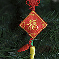Chinese Christmas Tree Ornament by Sally Weigand