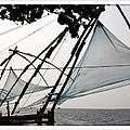 Chinese Fishing Net by Priya Abraham