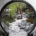 Chinese Garden by Jenny Hudson