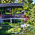 Chinese Gardens In Portland Oregon by Elaine Plesser