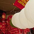 Chinese Lanterns by Stephen Estell