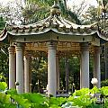 Chinese Pavilion In A Lotus Flower Garden by Yali Shi