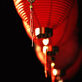 Chinese Whispers by Evelina Kremsdorf