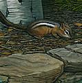 Chipmunk by Lisa Bonforte