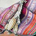 Choclos Sobre Aguayo by Sonia Tudela