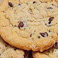 Chocolate Chip Cookies Pano by Andee Design
