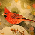 Christmas Cardinal by Betty-Anne McDonald