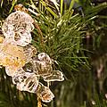 Christmas Crystal Angel 1 B by John Brueske