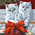 Christmas Kittens by Richard De Wolfe