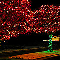 Christmas Lights Red And Green by LeeAnn McLaneGoetz McLaneGoetzStudioLLCcom