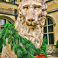 Christmas Lion At Biltmore by William Jobes