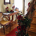 Christmas Rose And Stairs  by Nancy Patterson
