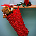 Christmas Stocking Filled With Presents With Empty Milk Glass.  by Richard Thomas
