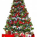 Christmas Tree And Presents Isolated On White by Richard Thomas