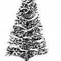 Christmas Tree Bw by Gail Schmiedlin