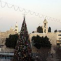 Christmas Tree In Manger Square Bethlehem by Munir Alawi