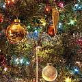 Christmas Tree by Scott Wood