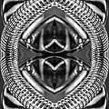 Chromata by Gene Hilton