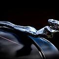 Chrome Angel by Douglas Pittman