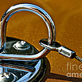Chrome Lock by Susan Herber
