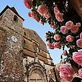 Church And Roses by Joe Bonita