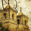 Church Towers by Joan Bertucci