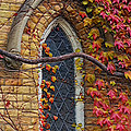 Church Window Autumn by Andrew Fare
