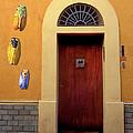 Cicada Door Arles France by Dave Mills