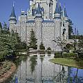 Cinderella's Castle by Tim Mulina