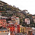 Cinque Terre I by David Ritsema