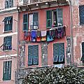 Cinque Terre V by David Ritsema