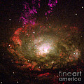 Circinus Galaxy by Nasa