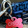 Cisco's Gear by Susan Herber