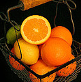 Citrus Fruit Basket by Cindy Haggerty