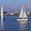 City Harbor Sailing by Brian Wallace
