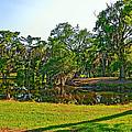 City Park Lagoon by Steve Harrington