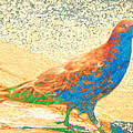 Citybird by Lenore Senior