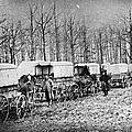 Civil War: Ambulances, C1864 by Granger